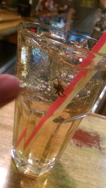 su içinde örümcek