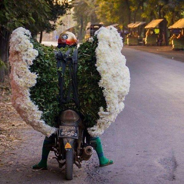çiçek ve motorsiklet