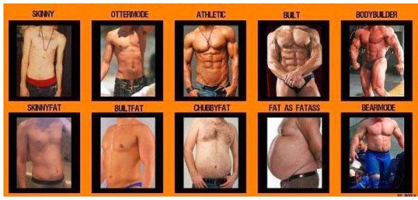 Atletik Erkek vücudundan Kilolu Erkek vücuduna