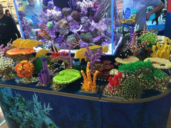 lego deniz bitkisi