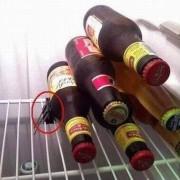 Buzdolabında Şişe Tutucu