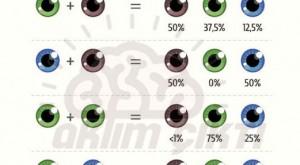 Çocuğunuzun Göz Rengi Ne Olabilir?