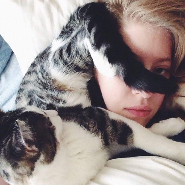 İnsanın Uyurken Kafasına Yatan Kedi