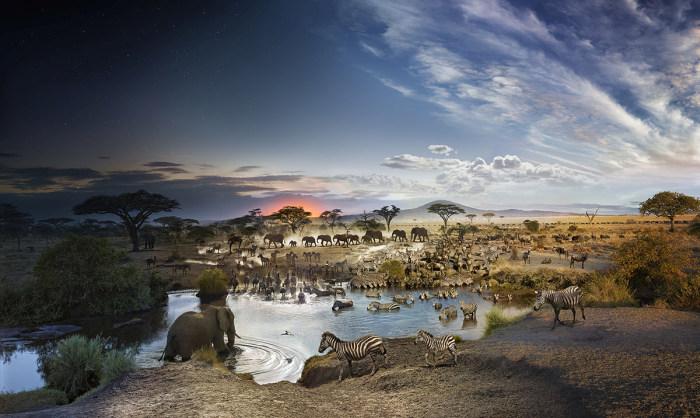 İnanılmaz Gün Batımı Fotoğrafları